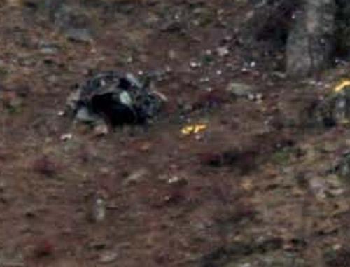 Düşen helikopterden ilk görüntüler 7