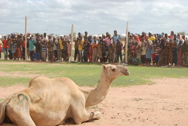 Alışılmış bir başlık; Konyadan Kenyaya 29