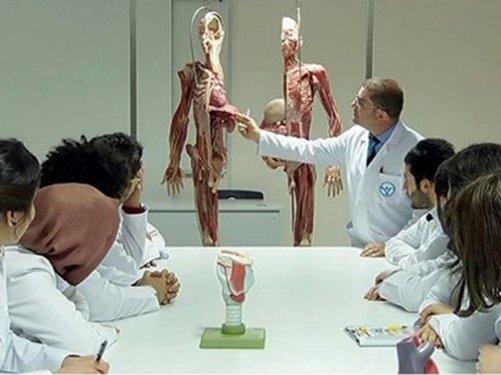 Konyada kadavra ile anatomi dersi 1