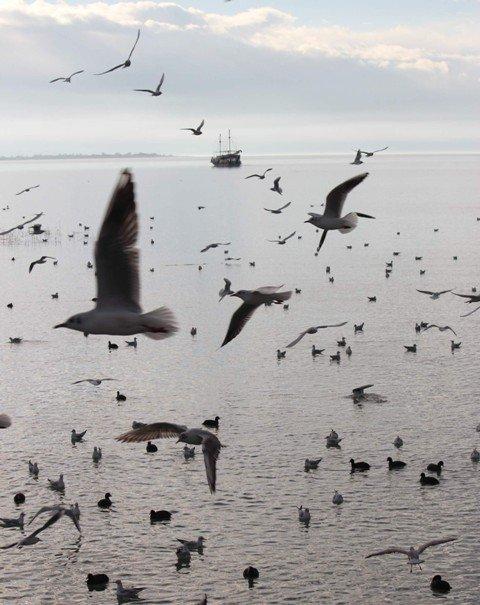 Beyşehir Gölünden kartpostallık görüntüler 10