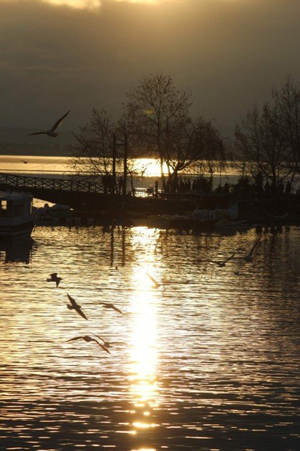 Beyşehir Gölünden kartpostallık görüntüler 3