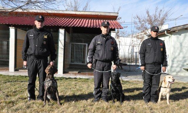 Bu köpekler suçlulara göz açtırmıyor 6