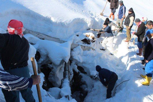 Kışın depolayıp yazın kar yiyorlar 2