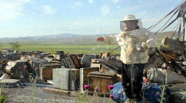 Konyada arı kovanı yüklü kamyon devrildi: 2 yaralı 3