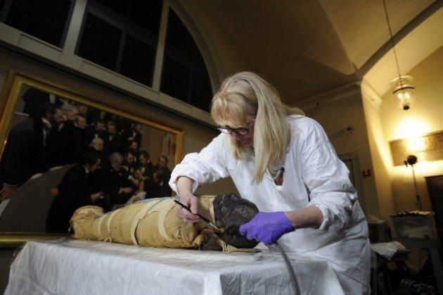 2500 yaşındaki mumya tabuttan çıktı 10