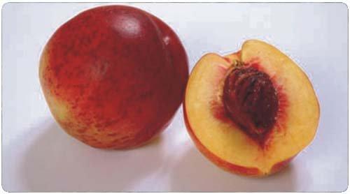Oruç Tutarken Susuzluğu Gideren Gıdalar 9