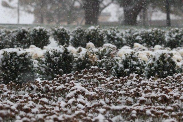 Konyaya yılın ilk karı yağdı 19
