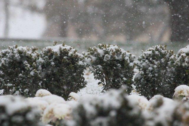 Konyaya yılın ilk karı yağdı 20