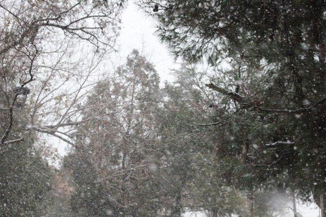 Konyaya yılın ilk karı yağdı 7
