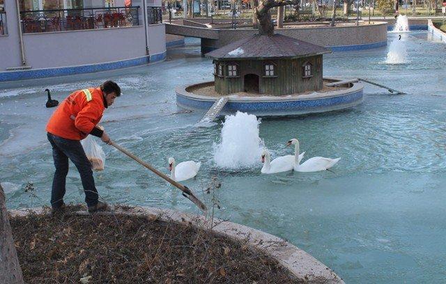 konyada havuzlar buz tuttu 6