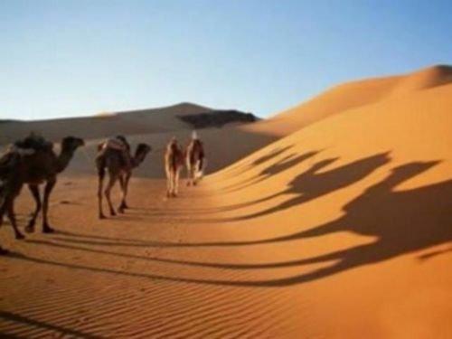 Hz. Muhammedin ümmeti için en korktuğu şeyler 17