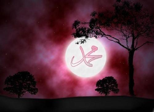 Hz. Muhammedin ümmeti için en korktuğu şeyler 6