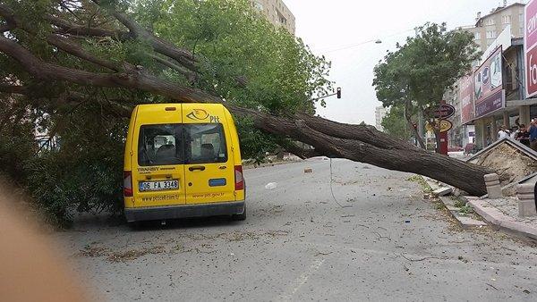 Şiddetli fırtına korkuttu 10
