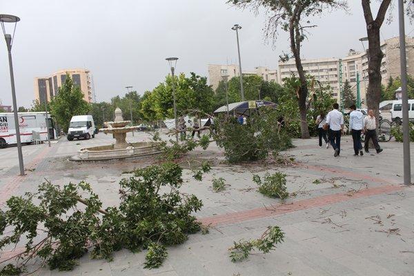 Şiddetli fırtına korkuttu 6