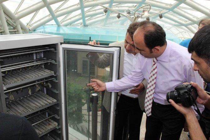 Konya Tropikal Kelebek Bahçesi Ziyaretçi Kabulüne Başlıyor 3