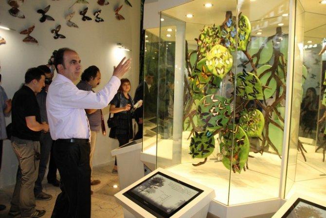 Konya Tropikal Kelebek Bahçesi Ziyaretçi Kabulüne Başlıyor 4