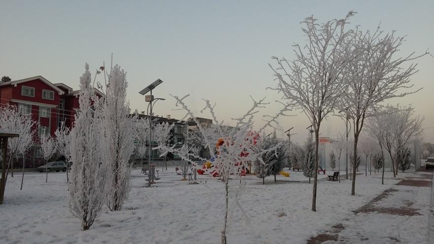 Şehir dondu 2