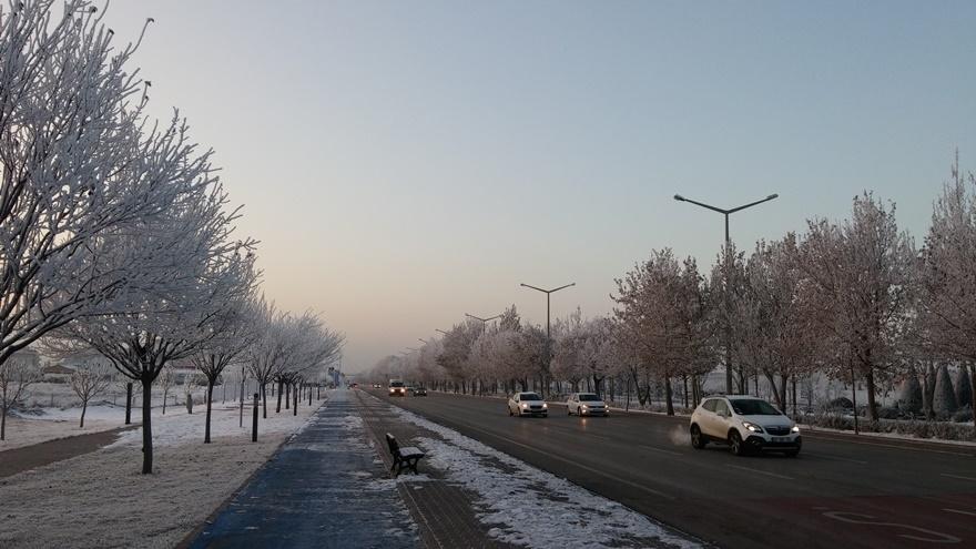Şehir dondu 5
