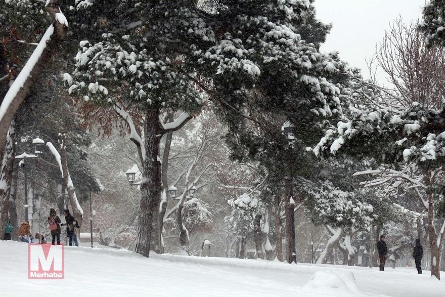 Konya'dan kar manzaraları [37 FOTO] 21