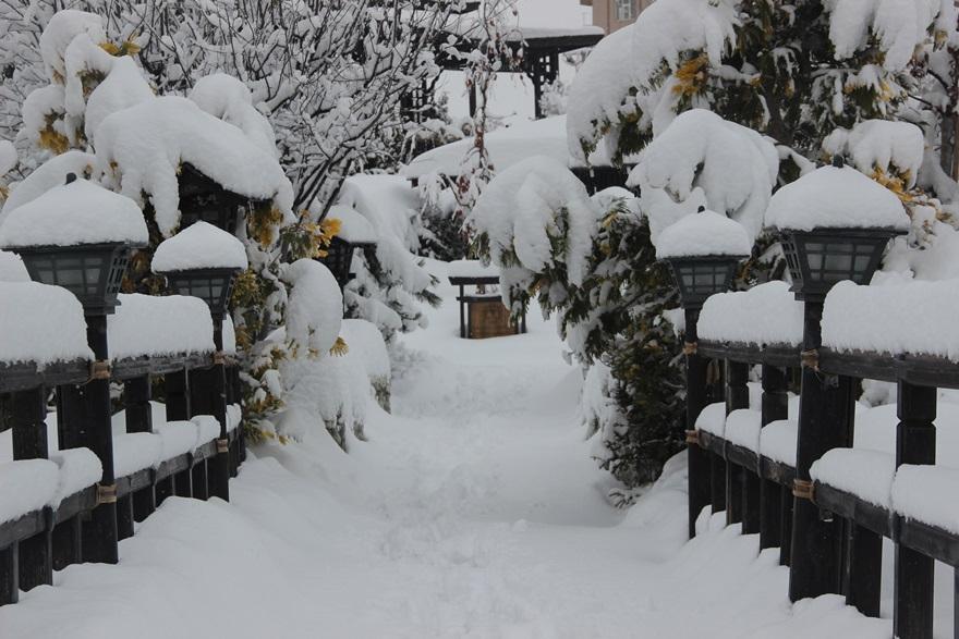 Japon Parkı'nda kar güzelliği 3