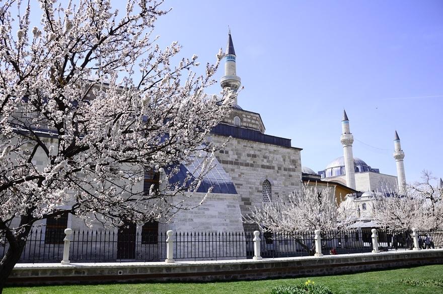 Konya'da bahar bir başka güzel 10