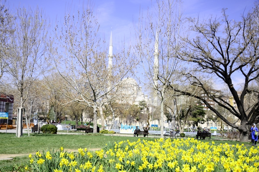 Konya'da bahar bir başka güzel 13