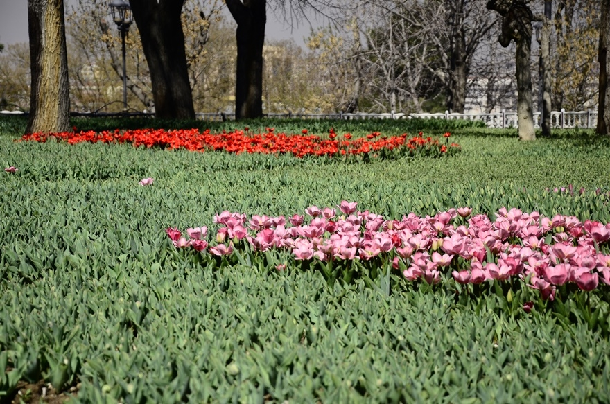 Konya'da bahar bir başka güzel 3