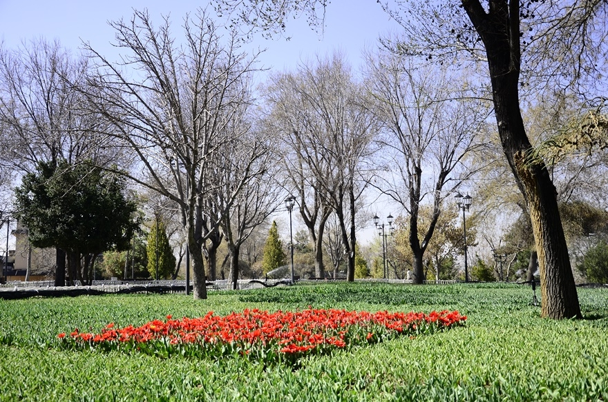 Konya'da bahar bir başka güzel 4