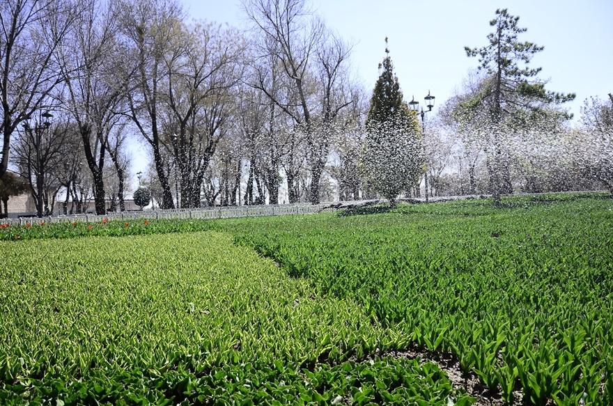 Konya'da bahar bir başka güzel 5