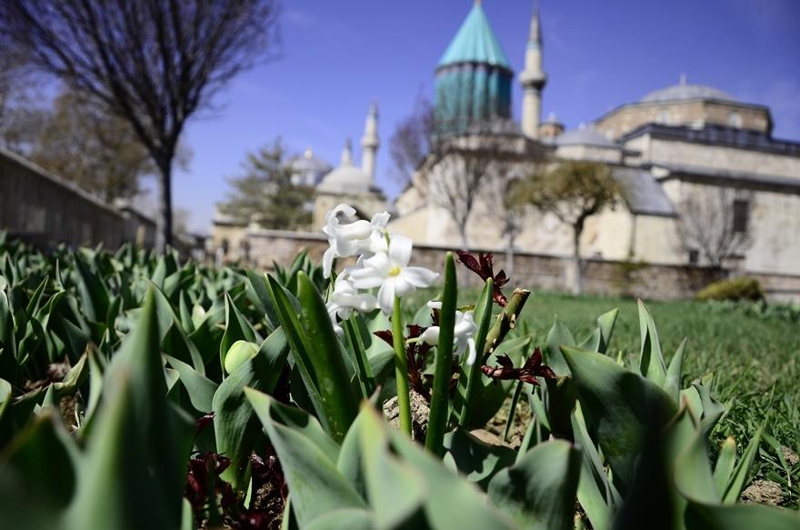 Konya'da bahar bir başka güzel 8