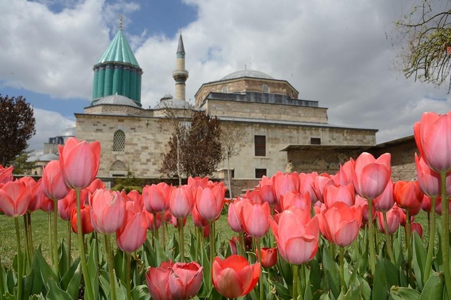 Milyonlarca lale Konya'yı süslüyor 3