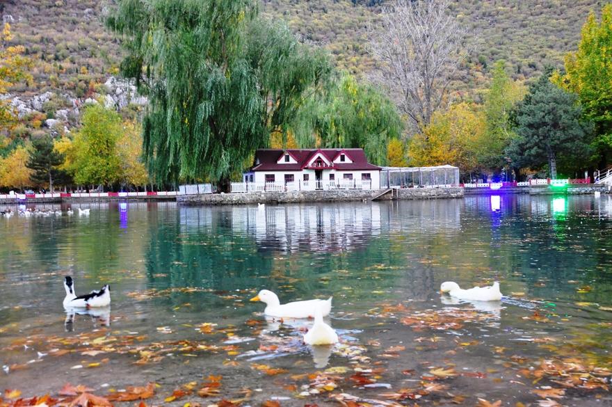 Seydişehir Kuğulu Park'ta kartpostallık görüntüler 1
