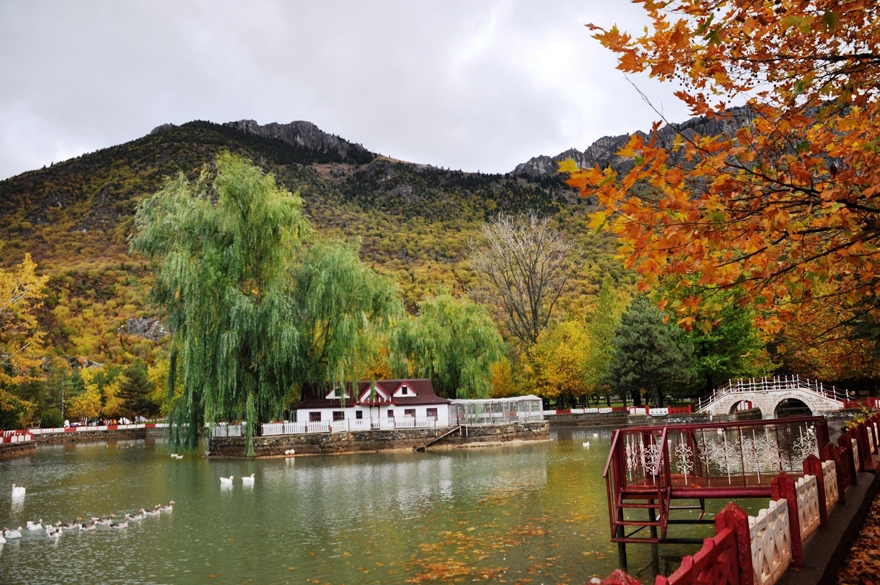 Seydişehir Kuğulu Park'ta kartpostallık görüntüler 2
