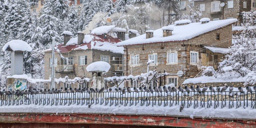 Hadim'de kar yağışı etkili oldu
