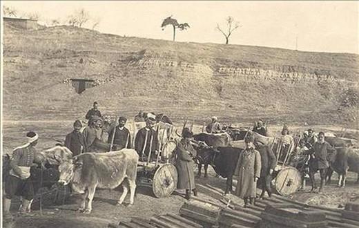 Çanakkale Zaferi'nin fotoğrafları 45