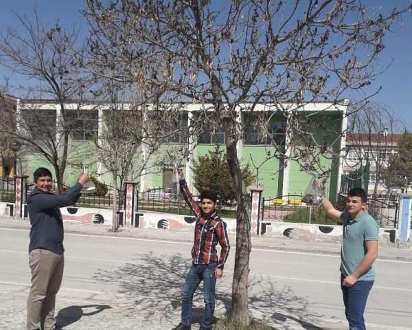 Cihanbeyli'de ağaçlar kitap açtı