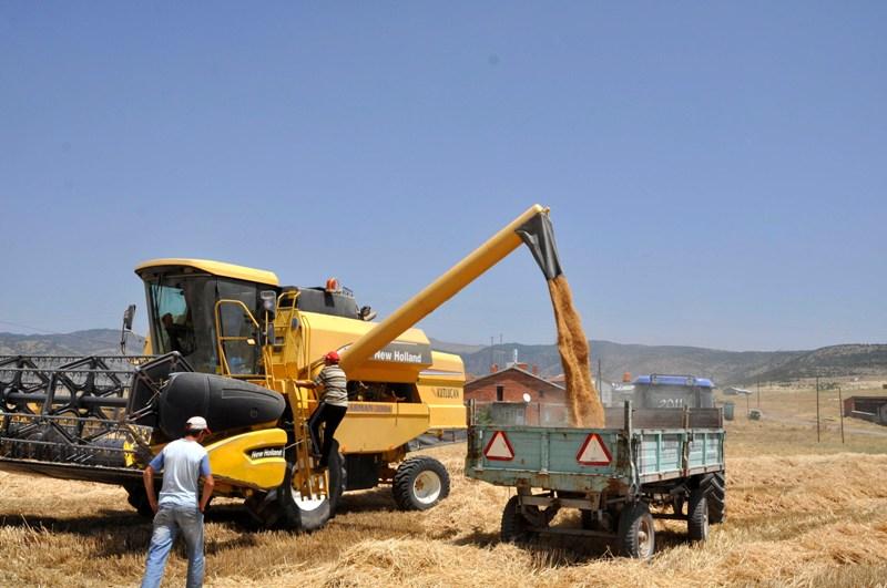 Yakında buğdaya da muhtaç olacağız