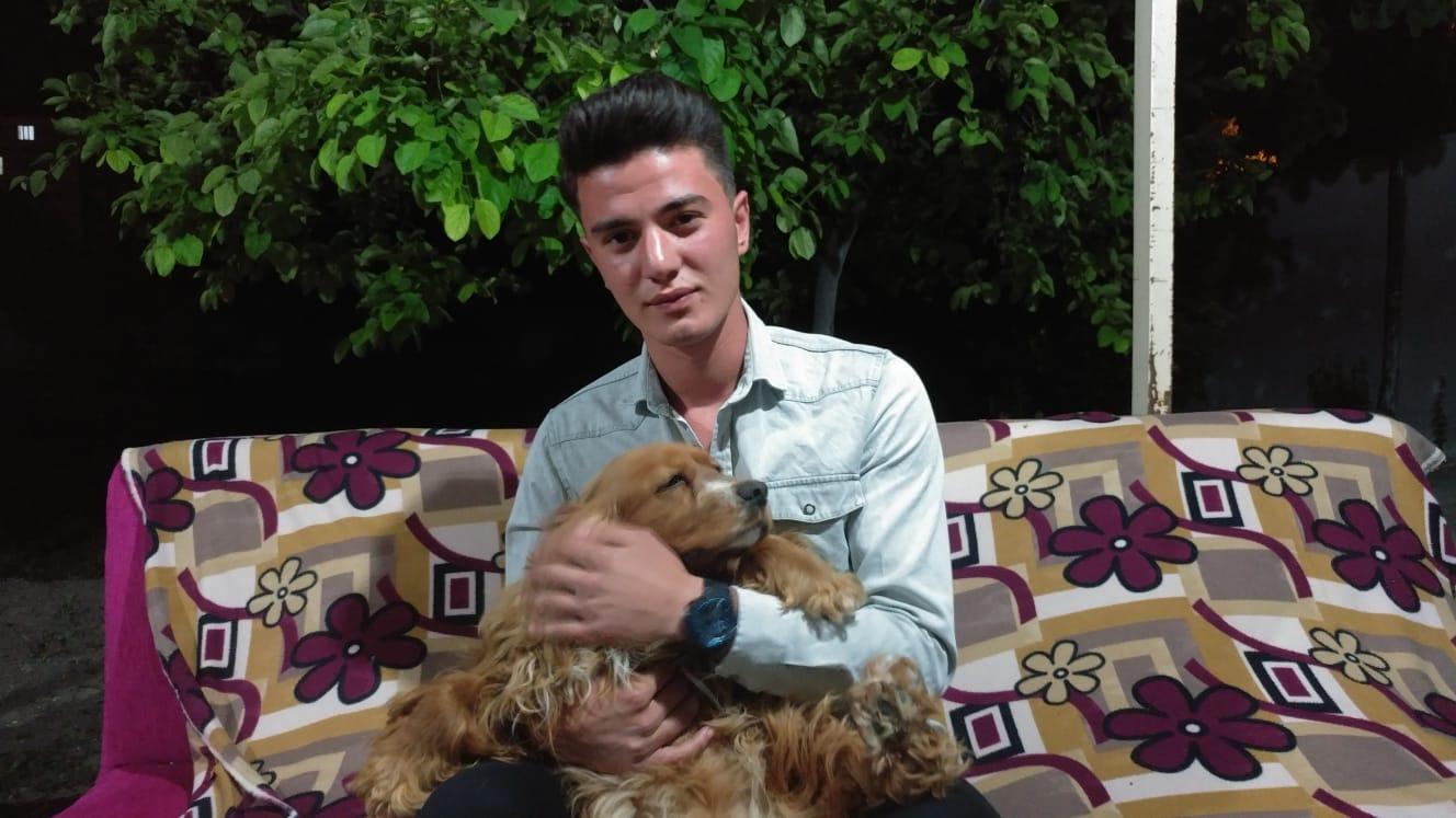 Otomobil çarptığı köpeği kalp masajı ile hayata döndürdü