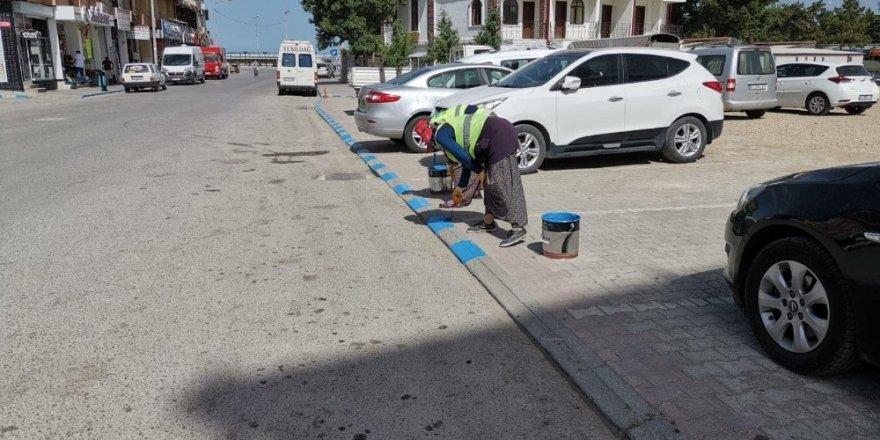 Beyşehir'in caddeleri göl mavisi renklere bürünüyor