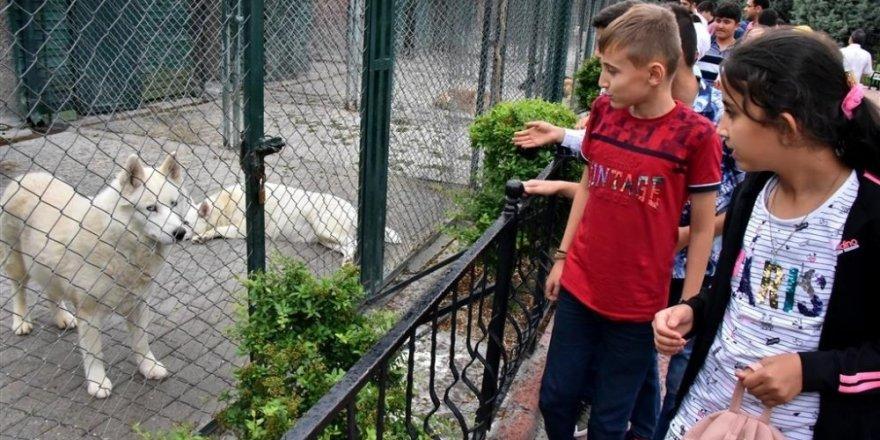 Karatay'dan öğrencilere Bilim Merkezi ve hayvanat bahçesi gezisi
