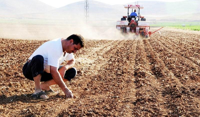 Topraklarımızın yüzde 80'i risk altında