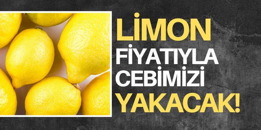 Limon fiyatı uçuşa geçti!