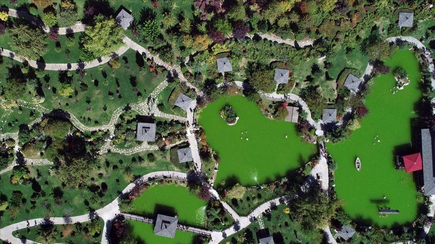 'Bu park Japonya'daymış hissi uyandırıyor'
