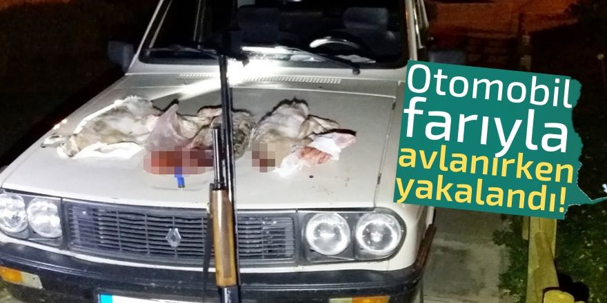 Otomobil farıyla tavşan avına ceza!