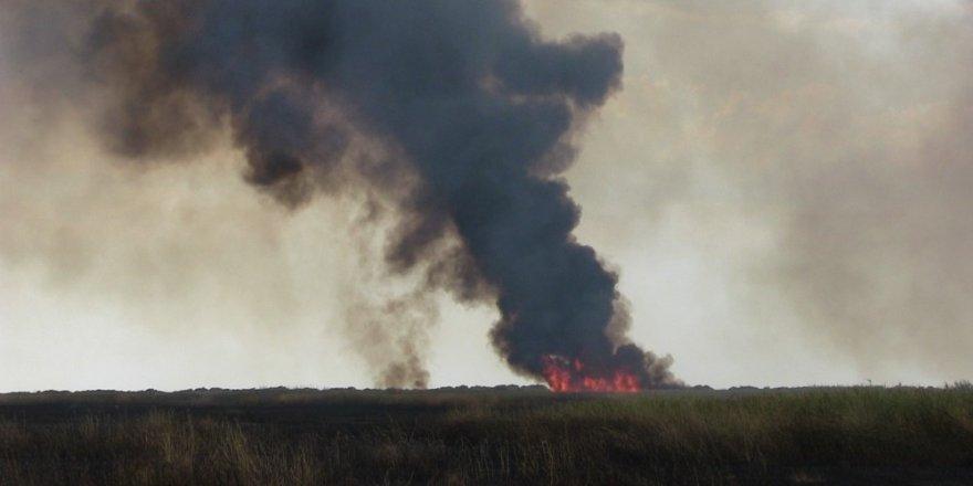 Hatay'da sazlık yangını