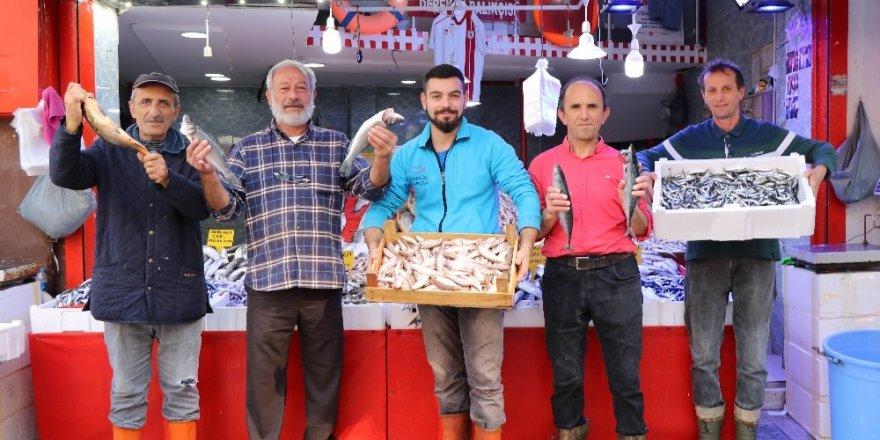 Karadeniz'de sezon balıkları uygun fiyata alıcılarını bekliyor