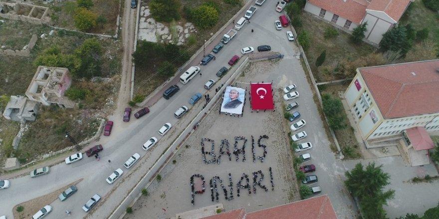 Barış Pınarı Harekatına katılan Mehmetçiğe cevizli destek