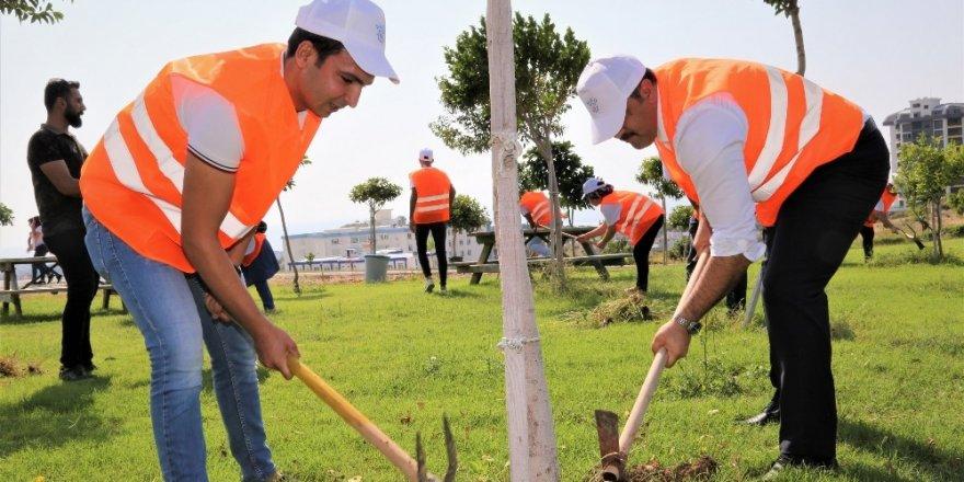 Rektör Kalan öğrencilerle ağaçlara bakım yaptı