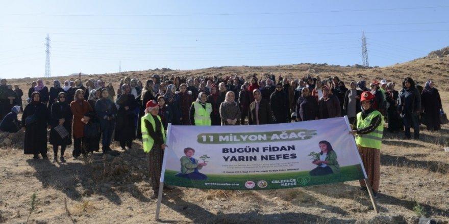 """""""Ak kadınlar"""" 33 bin fidanı toprakla buluşturdu"""