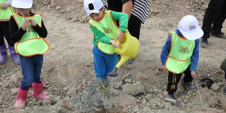 PAÜ binlerce fidanın toprakla buluşmasına destek oldu